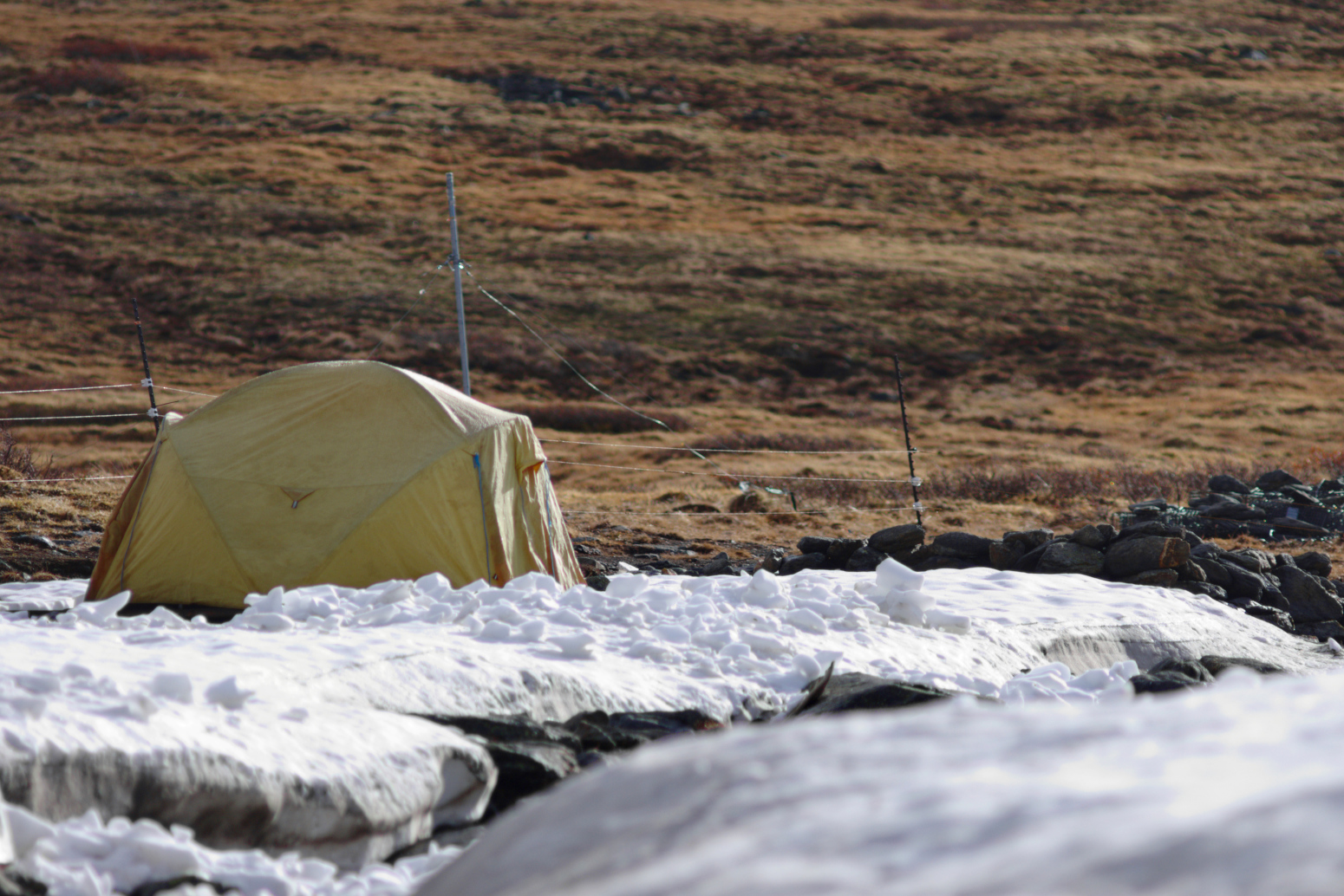 A tent set up with the tundra behind and a snowy creekbed in front.
