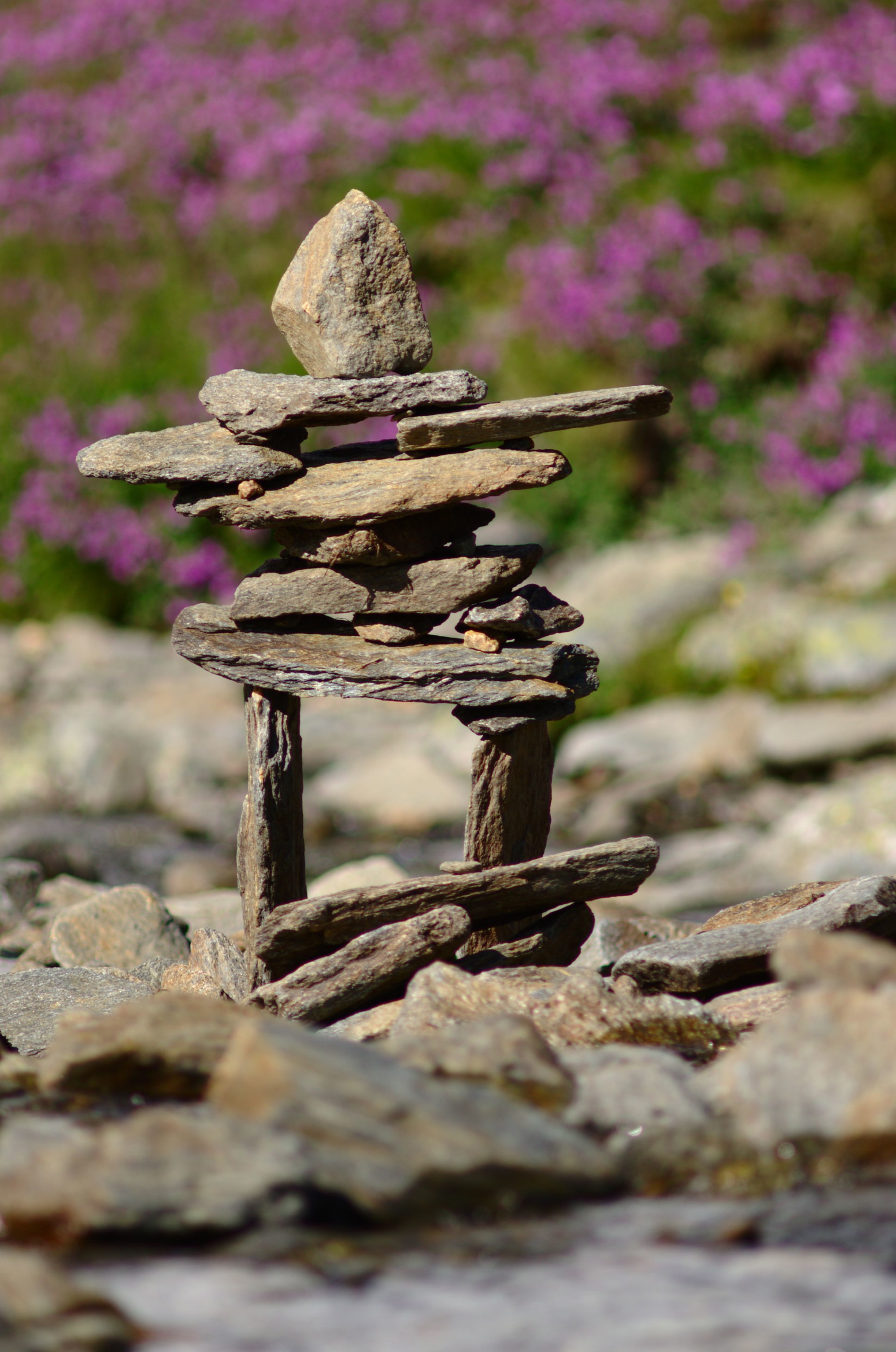 A nunatak built of rocks in a streambed.